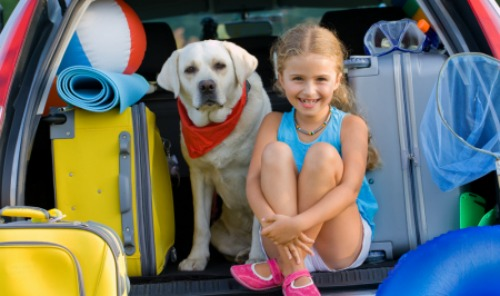 Pet Friendly | Tathra Beachside